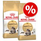 Lot Royal Canin Breed pour chat