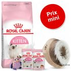 Lot Royal Canin Kitten nourriture + accessoires