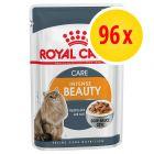 Lot Royal Canin 96 x 85 g