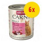 Lot 3 saveurs Animonda Carny Adult 6 x 800 g