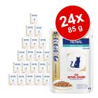 Lots de sachets fraîcheurs Royal Canin Veterinary Diet 24 x 100 g / 85 g