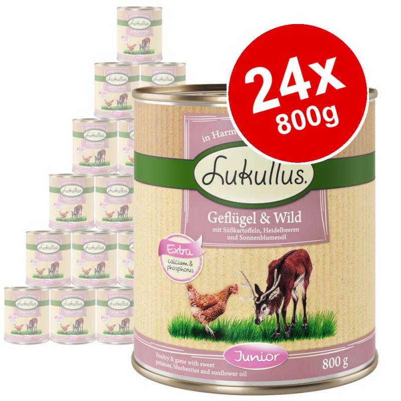 Lukullus Junior Saver Pack 24 x 800g