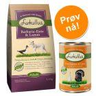 Lukullus prøvepakke: 1,5 kg tørrfôr + 6 x 400 g våtfôr