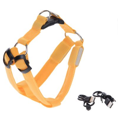 Luminous Dog Harness