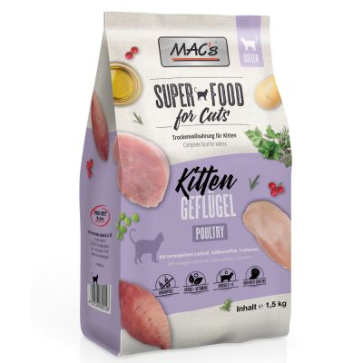 MAC's Cat Kitten pour chaton