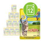 MAC´s Cat Porsjonsposer 12 x 100 g