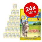 MAC´s Cat Pouch -säästöpakkaus 24 x 100 g