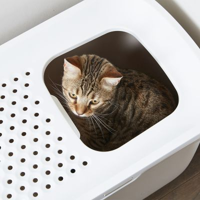 Maison de toilette Savic Hop In pour chat