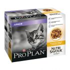 Megapack Pro Plan Nutri Savour Junior Pollo