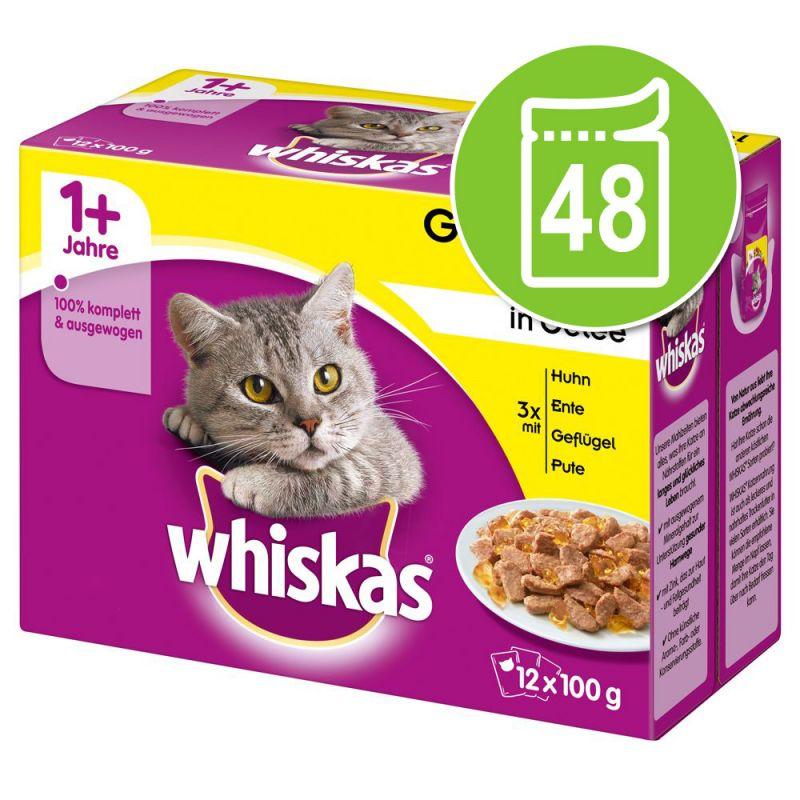 Megapack Whiskas 1+ años 48 x 85/100 g en bolsitas