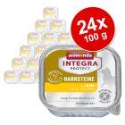 Megapakiet Animonda Integra Protect Adult Struvit, tacki, 24 x 100 g
