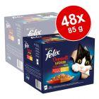 Megapakiet Felix Fantastic 2 smaki (So gut...), 48 x 85 g