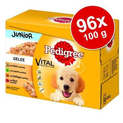 Megapakiet Pedigree Junior Saszetki, 96 x 100 g