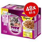 Megapakiet Whiskas Junior Potrawka w saszetkach, 48 x 85 g