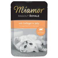 Miamor Ragù Royal Kitten