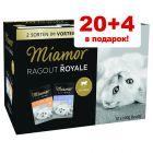 20 + 4 в подарок! Смешанная упаковка Miamor Ragout Royale 24 x 100 г