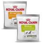 Mieszany pakiet próbny przysmaków Royal Canin