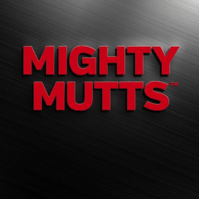 Mighty Mutts™ Tough Dog Toys Rubber S-Bone Gioco per cani