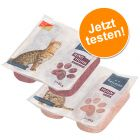Mixed Pack Felifine Pure 16 x 2 x 85 g