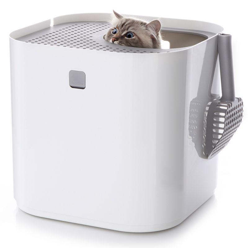 Modkat -kissanvessa