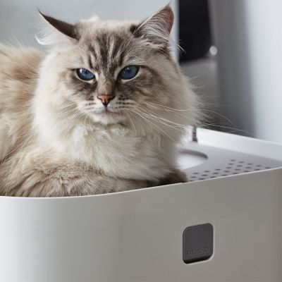 Modko ModKat Cat Litter Box