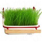 Mucki Barquette d'herbe verte pour oiseaux
