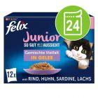 "Multi pakiranje Felix Junior Fantastic ""So gut wie es aussieht"" 24 x 85 g"