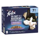 "Multi pakiranje Felix Senior Fantastic ""So gut wie es aussieht"" 24 x 85 g"