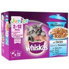 Multi pakiranje Whiskas Junior Pure Delight vrečke 12 x 85 g