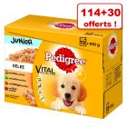 Multipack Pedigree pour chien 114 x 100 g + 30 sachets offerts !
