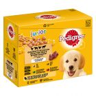 Multipack Pedigree Junior pour chiot