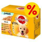 Multipack Pedigree Vital Protection Junior