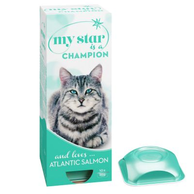 My Star is a Champion saumon de l'Atlantique pour chat