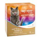 My Star is an Adventurer para gatos - Pack mixto