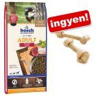 Nagy kiszerelésű Bosch kutyatáp + Barkoo csomózott rágócsont ingyen!