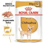 Nassfutter als Ergänzung zu Royal Canin Chihuahua Adult