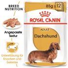 Nassfutter als Ergänzung zu Royal Canin Dachshund Adult