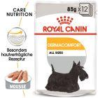 Nassfutter als Ergänzung zu Royal Canin Dermacomfort