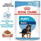Nassfutter als Ergänzung zu Royal Canin Maxi Puppy