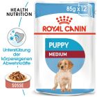 Nassfutter als Ergänzung zu Royal Canin Medium Puppy