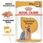 Nassfutter als Ergänzung zu Royal Canin Yorkshire Terrier Adult