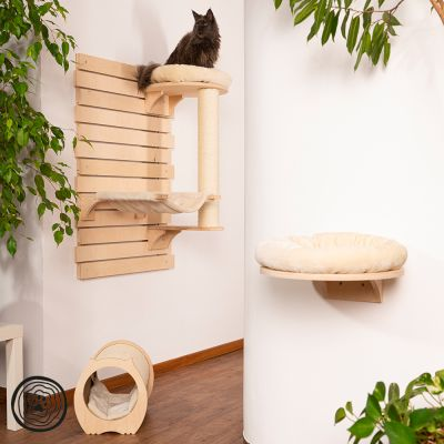 Natural Paradise Creative Wall Scratching Board