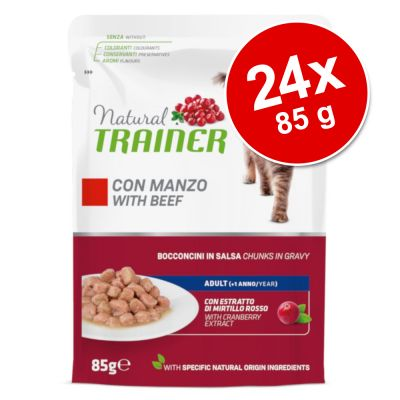 Natural Trainer Adult 24 x 85 g