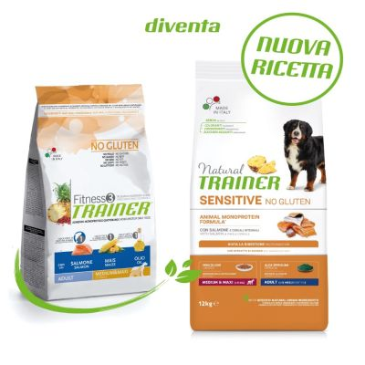 Natural Trainer Sensitive No Gluten Adult Medium/Maxi con Salmone