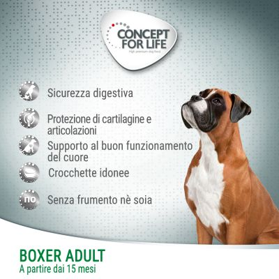 NUOVO! Concept for Life Boxer Adult