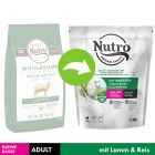 Nutro Adult Dog <10 kg Miel & orez