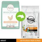 Nutro Adult Dog Pui & orez