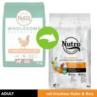 Nutro Core Adult Hund, kurczak i ryż