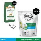 Nutro Core Puppy cordeiro e arroz para cachorros