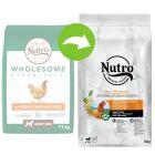 Nutro Dog Adult - Chicken & Rice
